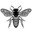 bee with patterns black white bee with ornaments vector image