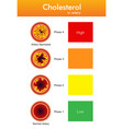 cholesterol in artery health risk design vector image vector image