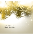 Elegant christmas background with fir branches and vector image