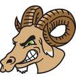 ram head logo mascot vector image vector image