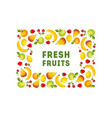 fresh fruits banner template square frame design vector image vector image