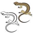 little lizard vector image