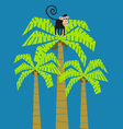 monkey climbed in a palm tree vector image