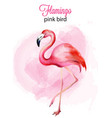 watercolor flamingo pink bird portrait vector image vector image