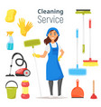 cleaning service woman character vector image vector image