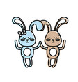 cute animal couple rabbit together vector image