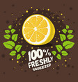 freshly squeezed homemade lemonade design with vector image vector image