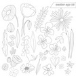 hand drawn set wild outlined flowers vector image