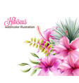 hibiscus flowers and palm leaves vector image vector image