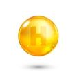 Vitamin H glitter gold icon vector image vector image