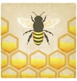 bee honeycomb old background vector image vector image