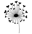 dandelion with hearts black and white dandelion vector image vector image