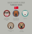 dogs by country of origin turkish dog breeds vector image