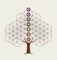 flower of life concept tree with yoga chakras vector image vector image