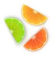 fresh orange lime and lemon slices on white vector image vector image