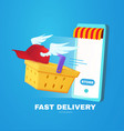 online shopping and fast delivery phone shopping vector image