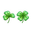 Realistic clover leaves vector image