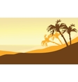 Silhouette of beach summer at the morning vector image vector image