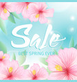 spring sale poster with pink hibiscus background vector image vector image