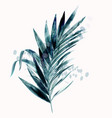 tropical tropical green palm leaf vector image vector image