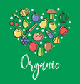 vegetables and organic fruit veggies vegetarian vector image vector image