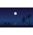 At night silhouette scenery of beach summer vector image vector image