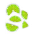 fresh lime slices on white background set vector image vector image
