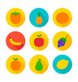 fruits flat circle icons vector image