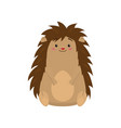 funny cute hedgehog sitting and looking at viewer vector image vector image