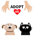 human hand adopt me dont buy dog cat pet adoption vector image vector image