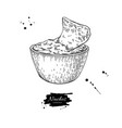 nachos drawing traditional mexican food vector image vector image