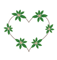 Rauvolfia Serpentina Blossoms in A Heart Shape vector image vector image