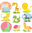 wild animal set vector image vector image