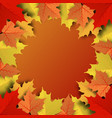 concept and idea colorful autumn maple leaf vector image