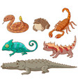 isolated picture poisonous animals vector image