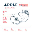 nutrition facts of apple hand draw sketch vector image