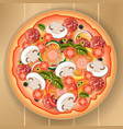 pizza with mushrooms and tomato vector image