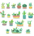 set cute hand drawn cactus and succulent vector image