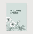 spring greeting card invitation floral vector image vector image