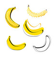 banana symbol logo silhouette outline and yellow vector image vector image
