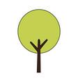 beautiful tree park icon vector image vector image