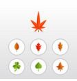 flat icon foliage set of aspen alder leaf and vector image vector image