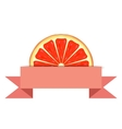Grapefruit slice with paper banner vector image