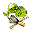 matcha tea top view on white background vector image vector image