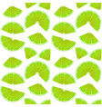 seamless endless pattern with print fresh lime vector image vector image