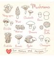 Set drawings of mushrooms for design menus vector image vector image