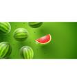 watermelon sweet fruits vector image vector image