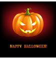 Black Halloween With Pumpkins vector image