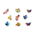 beautiful watercolor butterflys flying insect vector image