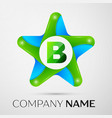letter b logo symbol in the colorful star on grey vector image vector image